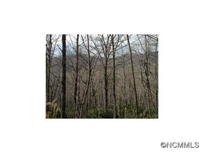 000 MARYLAND PLACE ROAD, Montreat, NC 28757 - Photo 1