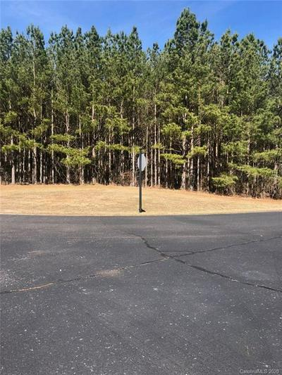 00 SPENCER POINTE ROAD #10C, Lilesville, NC 28091 - Photo 2