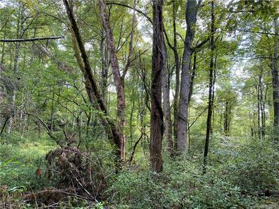 00 OLD ROGERS LANE, Webster, NC 28788 - Photo 2