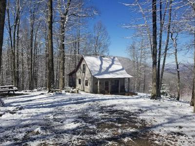 2630 CONLEY MOUNTAIN ASSOC RD, Whittier, NC 28789 - Photo 2