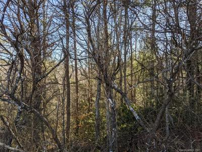 53 SUNNY MORNING CT # 4, Hendersonville, NC 28792 - Photo 1
