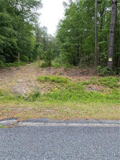TBD CHERAW ROAD, Hamlet, NC 28345 - Photo 2
