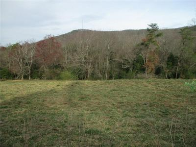 TBD WILLIE MCLEOD ROAD, TAYLORSVILLE, NC 28681 - Photo 1