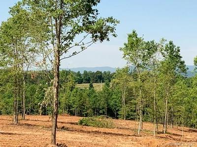 11.06 ACRES KENDRICK FARM LANE, Union Mills, NC 28167 - Photo 2