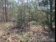 160 VALLEY SPRINGS DR # 54, Olin, NC 28660 - Photo 1
