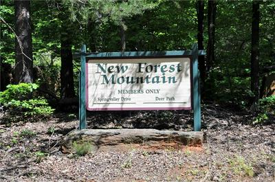000 WESTERN MEANDER ROAD #50, Union Mills, NC 28167 - Photo 2