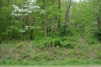 99999 TANASEE GAP ROAD, Balsam Grove, NC 28708 - Photo 1