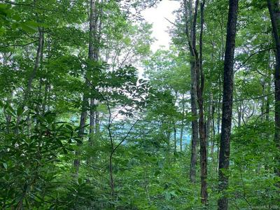 TBD ROCK CREEK ROAD #8, Rosman, NC 28772 - Photo 2