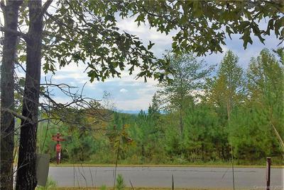 118 MYSTIC RIDGE LN, Union Mills, NC 28167 - Photo 2