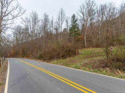 250 PAINT FORK RD, Barnardsville, NC 28709 - Photo 1