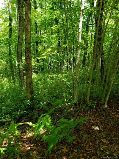 LOT 10 FOREST TRAIL #10, Balsam Grove, NC 28708 - Photo 2