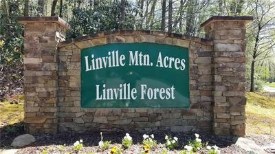 64 LINVILLE DR, Marion, NC 28752 - Photo 2