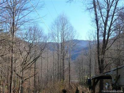 209 STONEY FORK RD, Barnardsville, NC 28709 - Photo 1