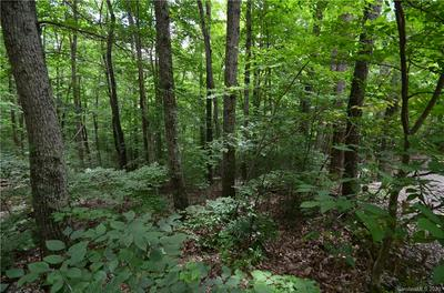 00 WINDAGO ROAD #2, Weaverville, NC 28787 - Photo 2