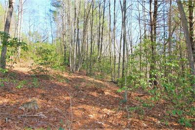 LOT #31 HEARTWOOD FOREST DRIVE #31, COLLETTSVILLE, NC 28611 - Photo 2