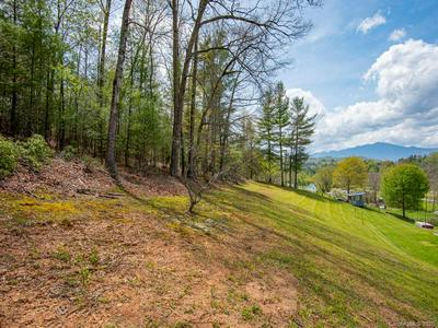 000 LILLY BRANCH DRIVE, Bakersville, NC 28705 - Photo 2