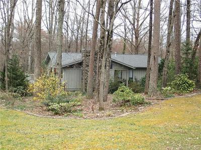 3020 CHESTNUT TREE RD, HENDERSONVILLE, NC 28792 - Photo 2