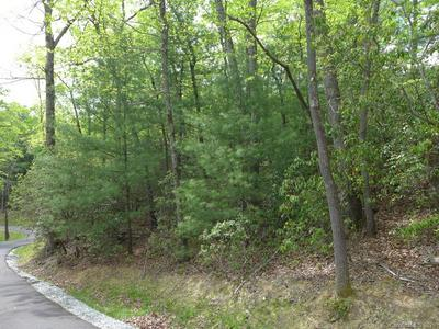 LOT 14 FERNDALE ROAD, Pisgah Forest, NC 28768 - Photo 1