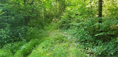 LOT 10 VALLEY COVE PLACE, Waynesville, NC 28785 - Photo 2