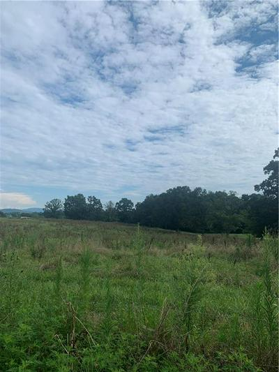 00 OLD LANDFILL ROAD, Taylorsville, NC 28681 - Photo 2