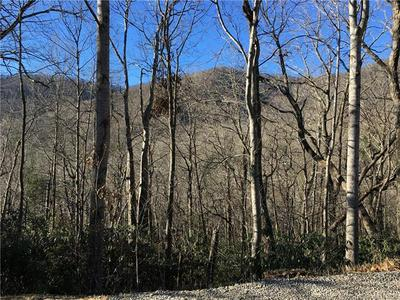 99999 MARYLAND PLACE, Montreat, NC 28757 - Photo 2
