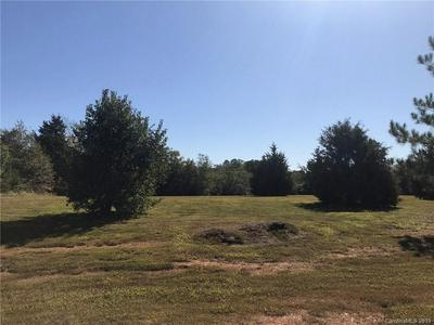 5033 DEER RUN DRIVE #LOT 8 & 9, Crouse, NC 28033 - Photo 2