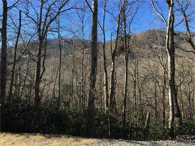 99999 MARYLAND PLACE, Montreat, NC 28757 - Photo 1