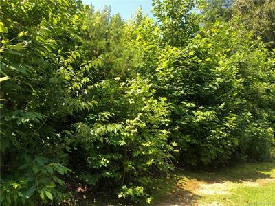 43 E OAKWOOD DR # 24, Nebo, NC 28761 - Photo 2