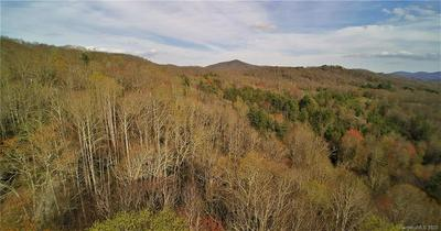 0 BACK COUNTRY ROAD, Tuckasegee, NC 28783 - Photo 1
