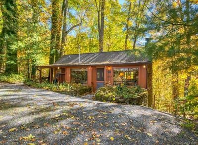 297 OLD DUMMY LINE RD, Balsam, NC 28707 - Photo 1