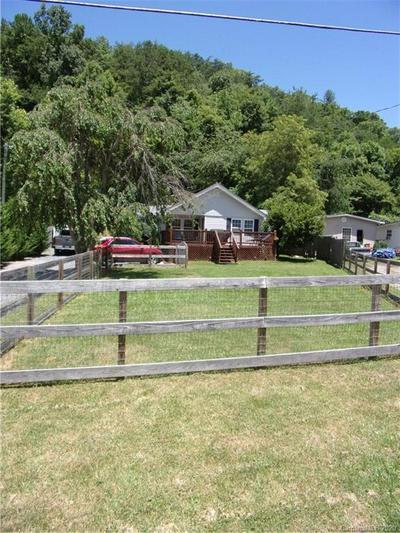 258 DILLINGHAM RD, Barnardsville, NC 28709 - Photo 2