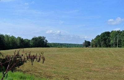 0 OLD LANDFILL ROAD, Taylorsville, NC 28681 - Photo 1