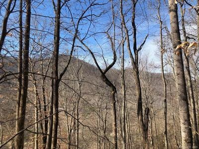 99999 PAINT FORK ROAD, Barnardsville, NC 28709 - Photo 1