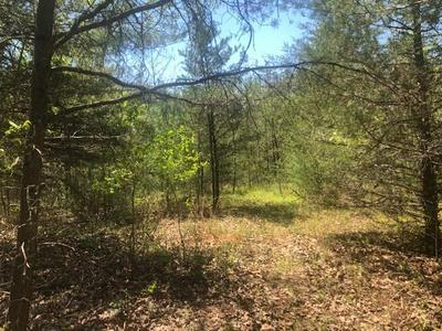 TBD DUG HILL ROAD, Lenoir, NC 28645 - Photo 1