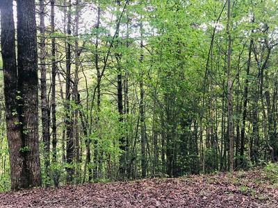 00 FONTANA FOREST DRIVE #44, Almond, NC 28702 - Photo 2