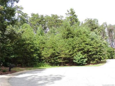 11 COBBLESTONE N DRIVE, Bostic, NC 28018 - Photo 1
