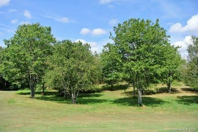 25 MAPLEWOOD LN, Taylorsville, NC 28681 - Photo 1