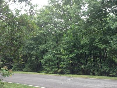 9999 MOUNTAIN IVY LANE, Hendersonville, NC 28739 - Photo 2