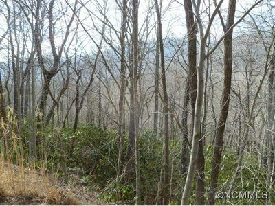 000 MARYLAND PLACE ROAD, Montreat, NC 28757 - Photo 2