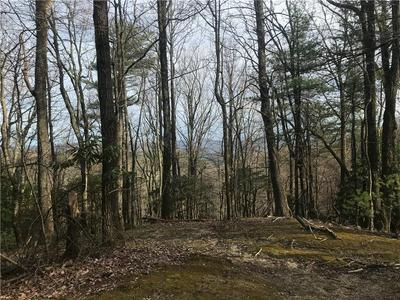 0 ROCKY KNOB ROAD, LENOIR, NC 28645 - Photo 1