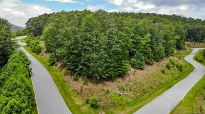 LOT 71 REYNOLDS PARKWAY #71, Boone, NC 28607 - Photo 2