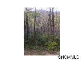 LOT 487 MARYLAND PLACE PLACE, Montreat, NC 28757 - Photo 1