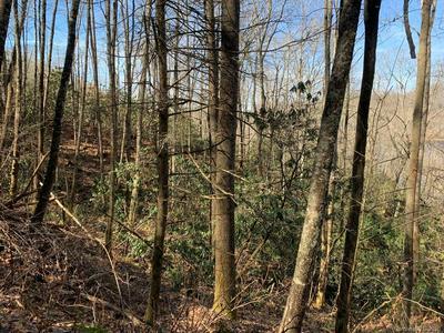 LT2 VESS OWEN ROAD, TUCKASEGEE, NC 28783 - Photo 2