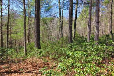 LOT #31 HEARTWOOD FOREST DRIVE #31, COLLETTSVILLE, NC 28611 - Photo 1