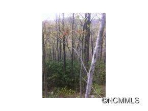 LOT 487 MARYLAND PLACE PLACE, Montreat, NC 28757 - Photo 2