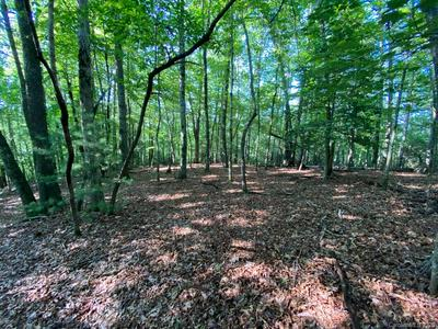 13 CANTRELL MOUNTAIN RD, Brevard, NC 28712 - Photo 2