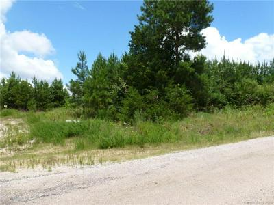 00 CANNERY ROAD, Lancaster, SC 29720 - Photo 2