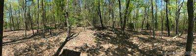 000 YOUNG MOUNTAIN ROAD, Cleveland, NC 27013 - Photo 1