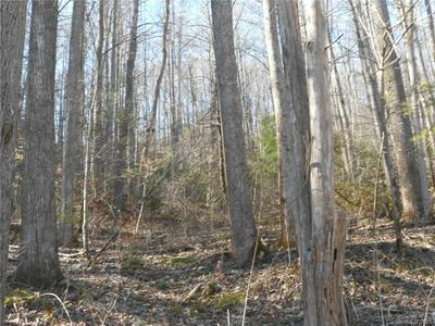 000 ARMSTRONG CREEK ROAD, MARION, NC 28752 - Photo 2