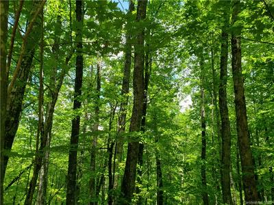 LOT 10 FOREST TRAIL #10, Balsam Grove, NC 28708 - Photo 1